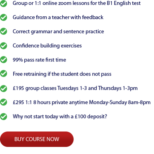 Private Online Lessons B1 English test